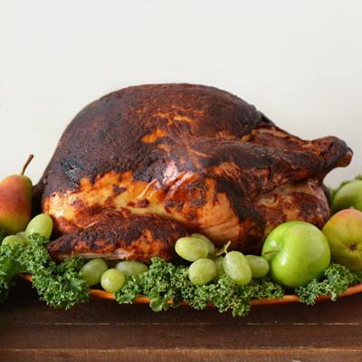Salvadorian Turkey