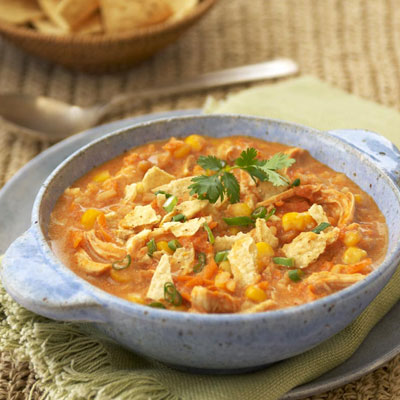 Chicken Tortilla Stew