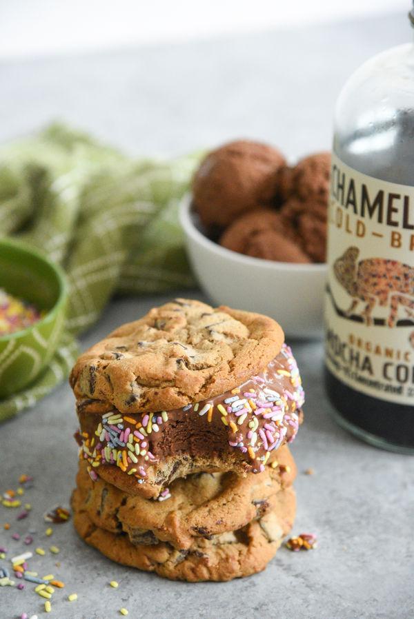 Chameleon Cold-Brew Mocha Ice Cream Sandwiches