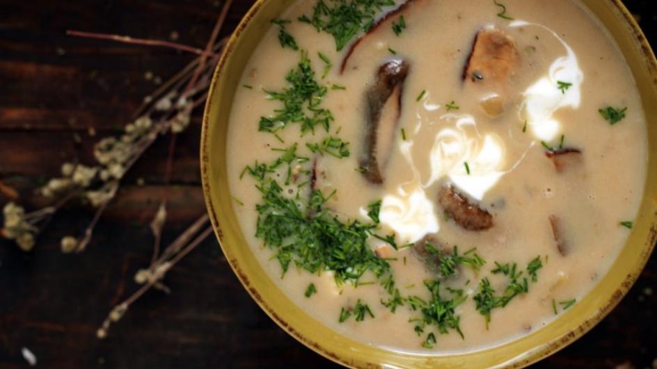 Zupa grzybowa ze świeżych grzybów ze śmietaną