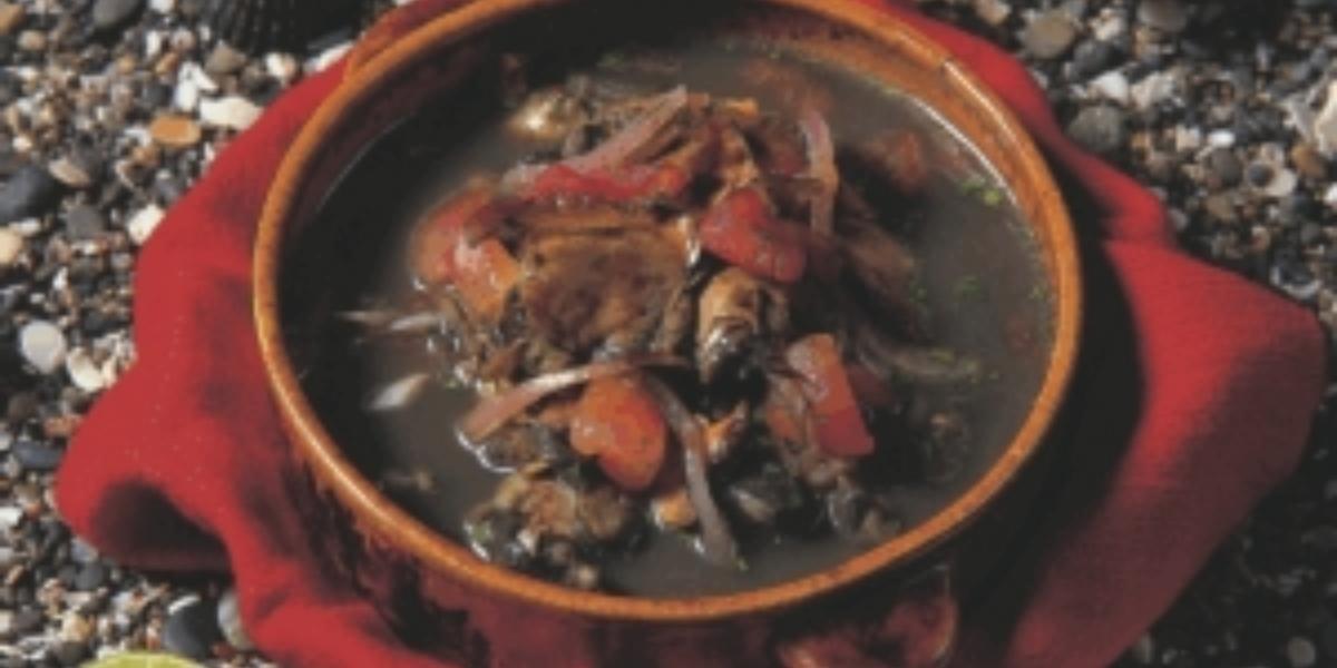 Ceviche de concha