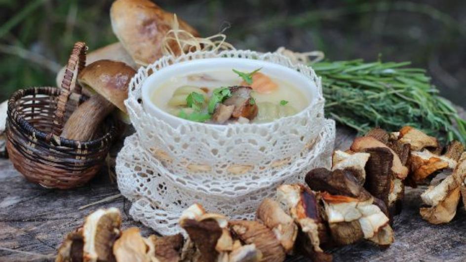 Domowa zupa grzybowa ze świeżych grzybów leśnych