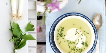 Crème vichyssoise z tymiankowym bouquet garni