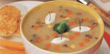 Pumpkin and Cream of Mushroom Soup