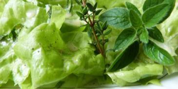Sałata zielona z sosem i ziołami