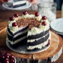 Tort z Czarnolasu