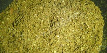 Garam Masala – przyprawa
