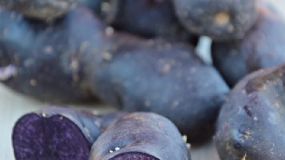 Krem z młodej botwinki z czosnkiem niedźwiedzim, tymiankiem cytrynowym i chipsami z ziemniaków truflowych