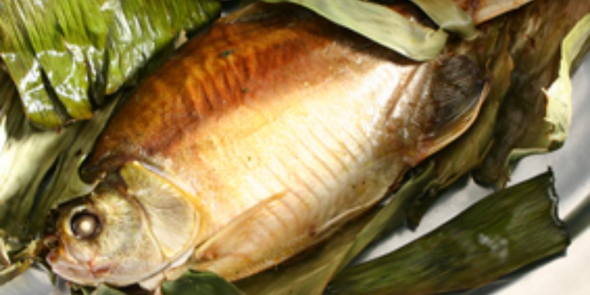Fotografia em tons de dourado e verde, com travessa de inox ao centro com peixe assado e folhas de bananeira,