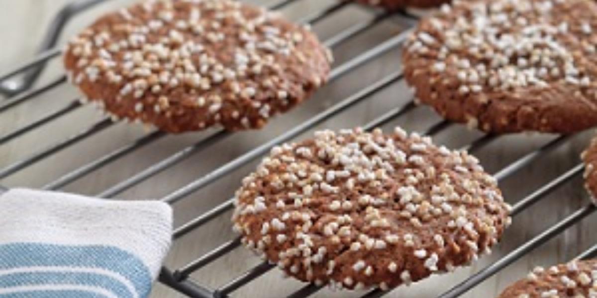 galletas de amaranto y cocoa deslactosadas
