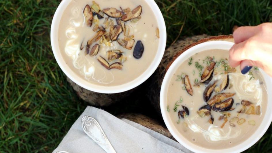 Tradycyjna zupa grzybowa ze świeżych grzybów